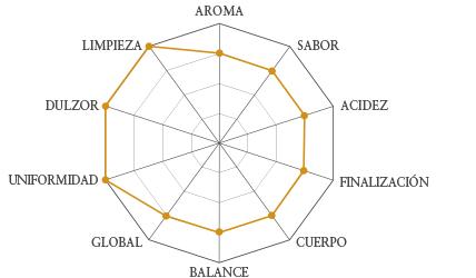 grafico-nicaragua.jpg